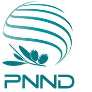 PNND Activities and Achievements: 2009-2013