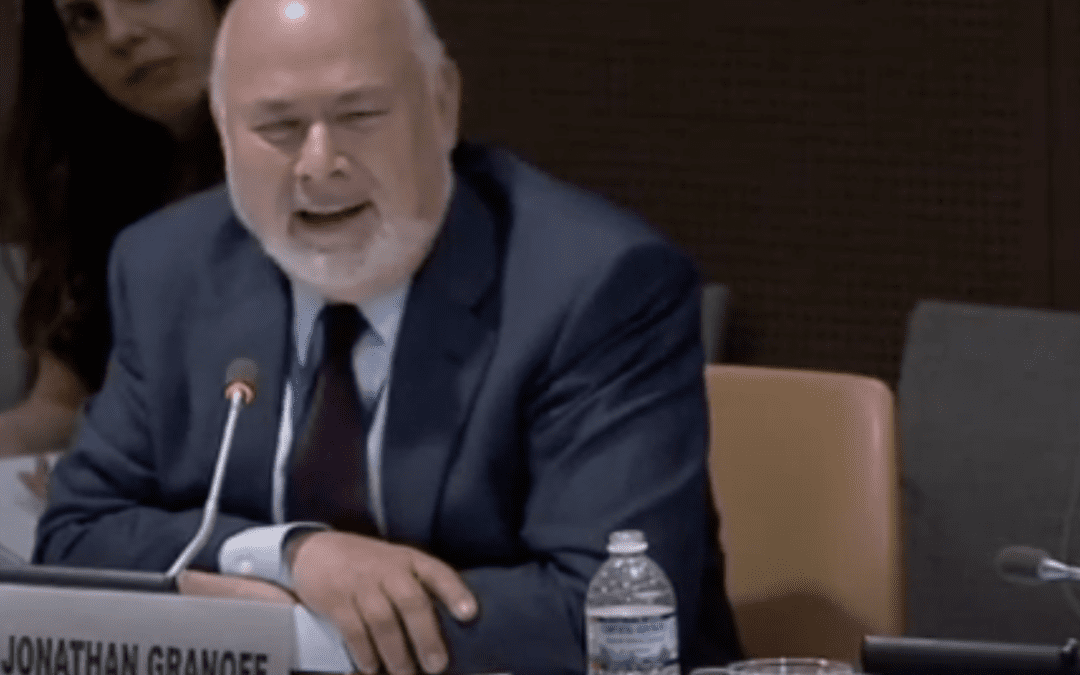 Report by UN Permanent Rep to the Holy See on Nuclear Disarmament